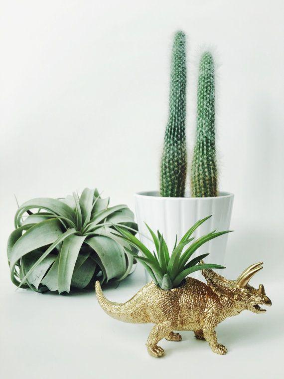 Kleine Gold Triceratops Dinosaurier Pflanzer + Air Pflanze; Dinosaurier-Pflanzer; Das Zubehörprogramm; Wohnheim; Hauptdekor; Geschenk; Büro-Dekor; Schreibtisch-Anlage