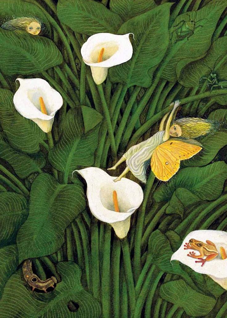 Diego Rivera, Fynbos Fairy in Calla Lillies                                                                                                                                                      More