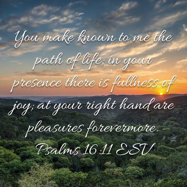Pin By Elaine Jump On Bible Verse Art Psalms 16 11 Bible Apps