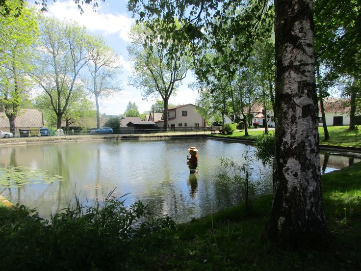 Vodník v nádrži - kraj Vysočina