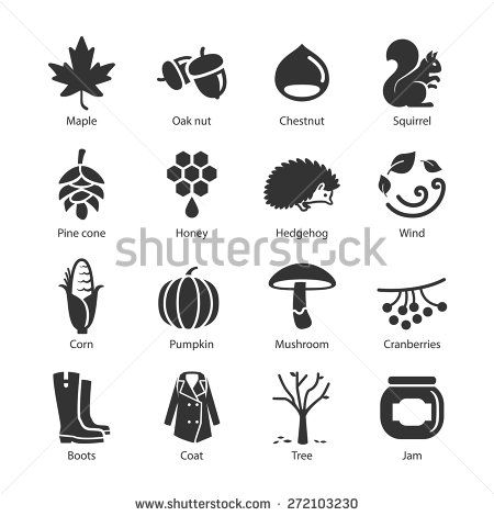 Acorn Stock Photos, Images, & Pictures | Shutterstock