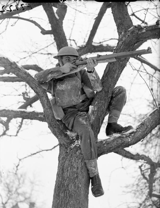 A British soldier from the 2nd Warwickshire Regiment takes aim with his rifle while seated in a tree in Rumegies, France. (January 22, 1940, F 2222)