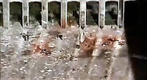Resultado de imagen de 9-11 jump victims