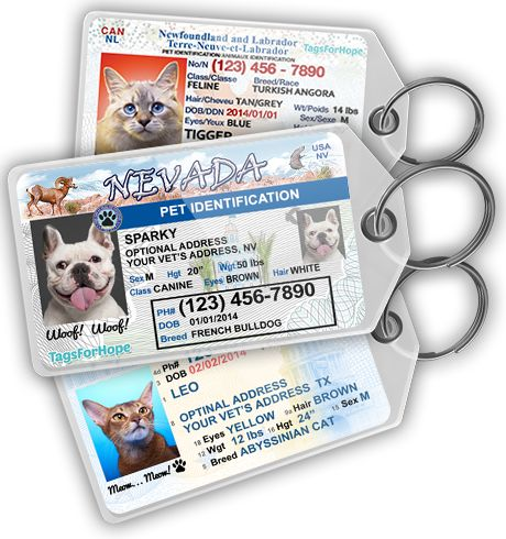 Love this idea for an ID tag for the pets - their own little state IDs. Lots more info than the normal coin.