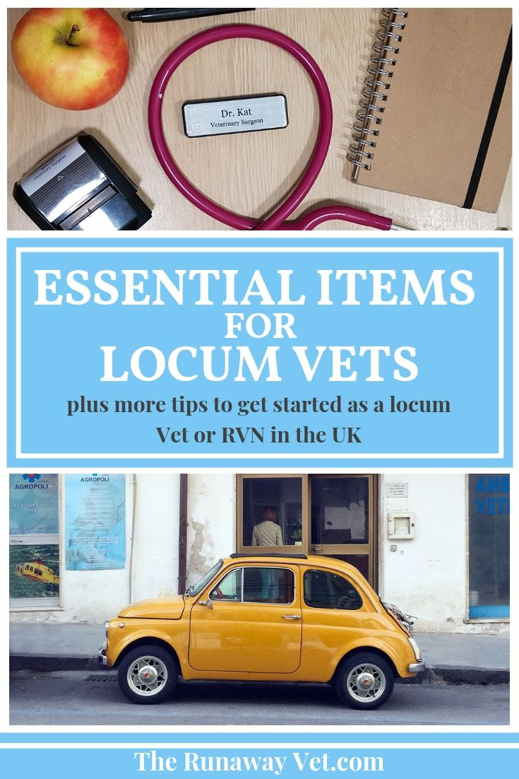 Essential Items For Locum Vets Starting Out In The Uk About Uk Work Overseas Essentials