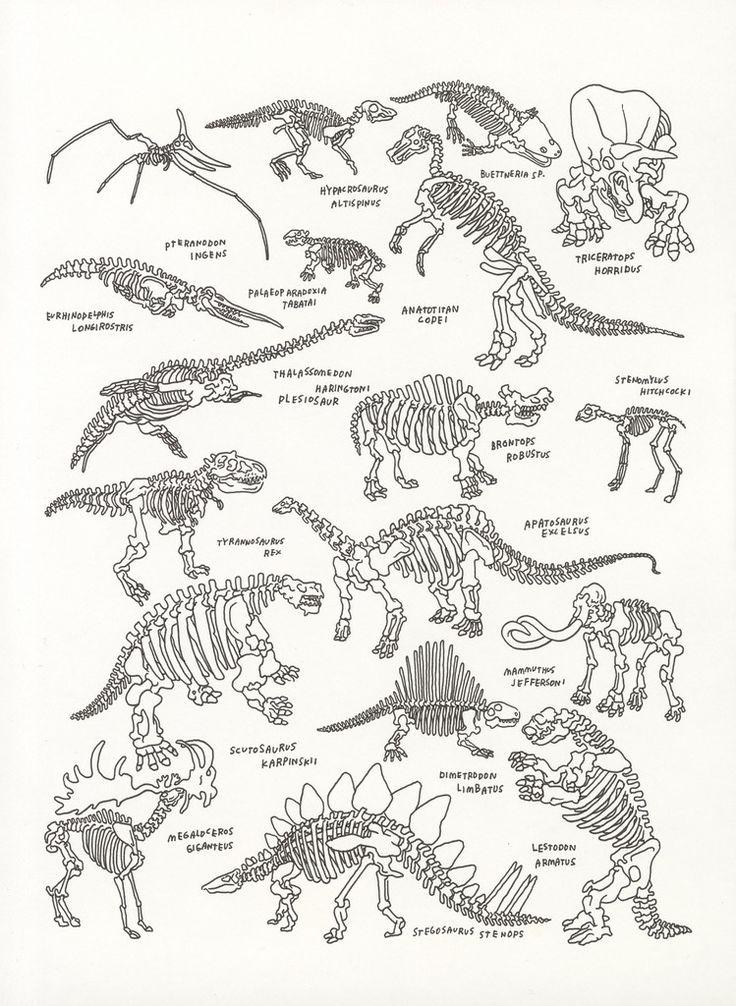 history of dinosaurs essay