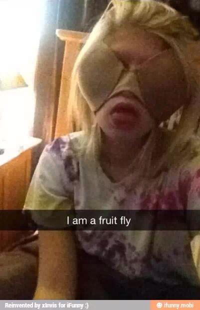 I am a fruit fly XD #funny #snapchat #lol