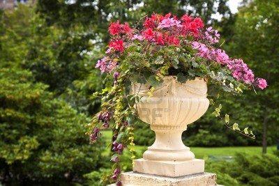 Sierlijke grote cement bloembakken gevuld met jaarlijkse bloemen in de zomertuin. Stockfoto - 13865011