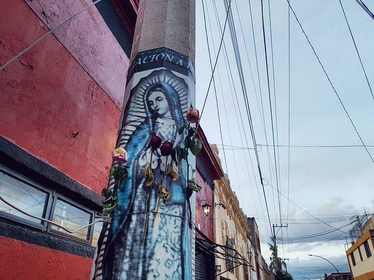 #Guadalajara