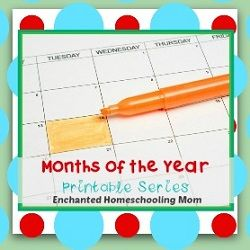 Months of the Year Printable Series