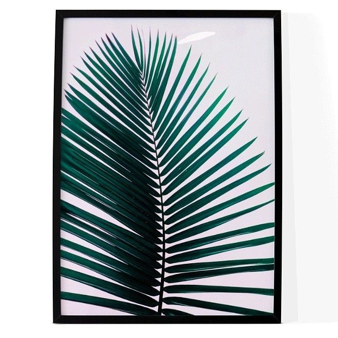 Minimal Millennial palm print available in A4, A2 and B1 sizes from  www.samuska.com tropical palm, palm tree, leaves, leaf, pink, fan palm