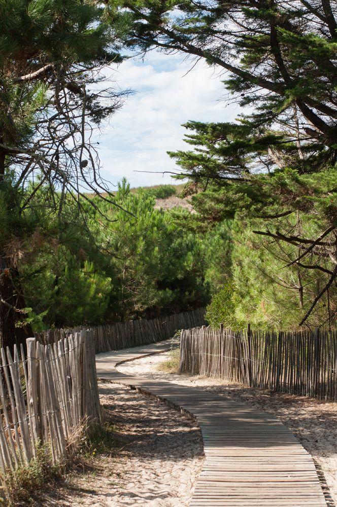 Wooden path to the beach, Mimizan.