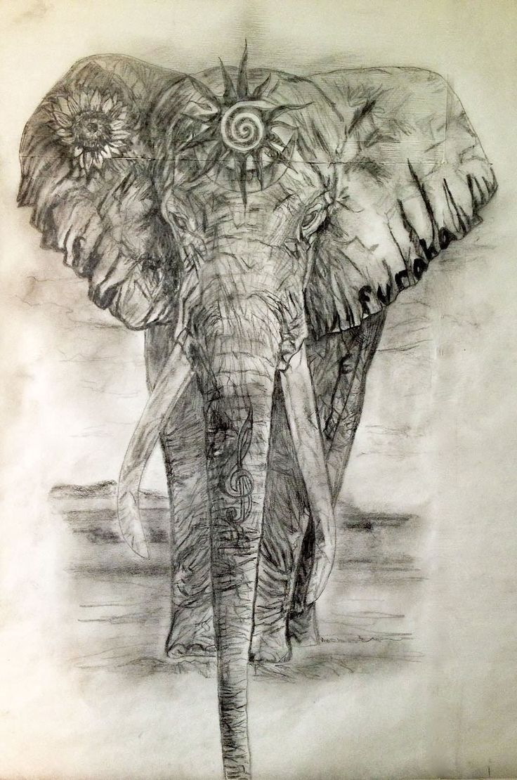 Grey Ink Indian Elephant Tattoo Design
