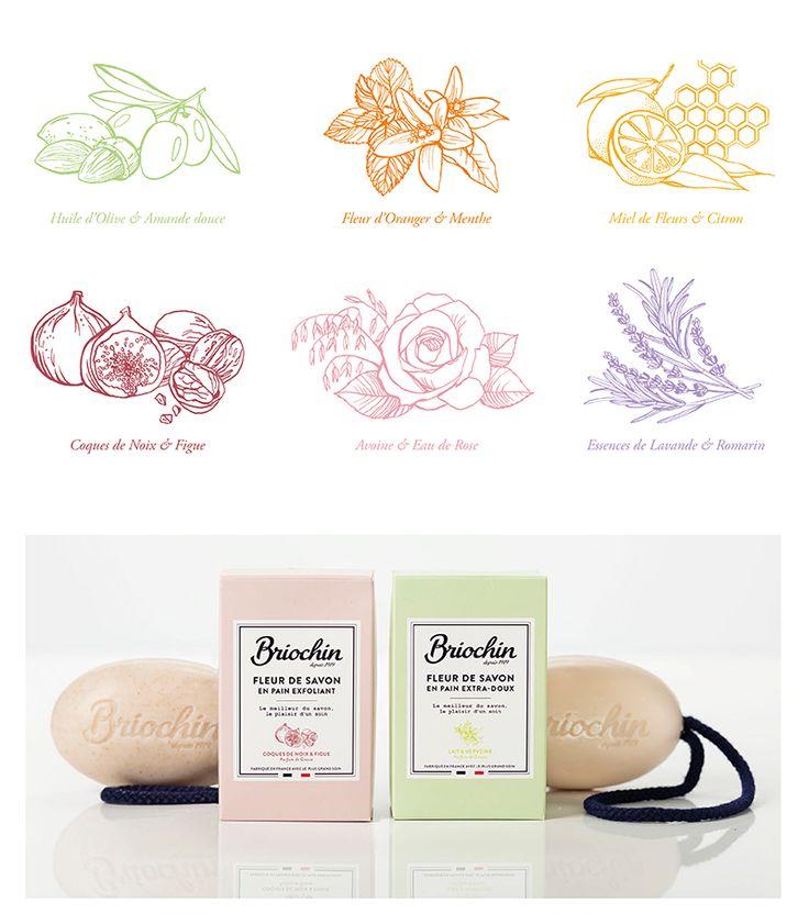 Briochin packaging / Illustration Clémence Thienpont