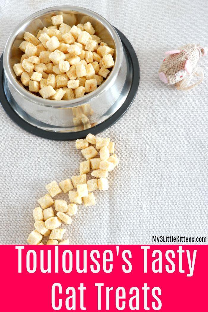 Toulouse S Tasty Cat Treats My 3 Little Kittens Homemade Cat Food Cat Treats Easy Dog Treat Recipes