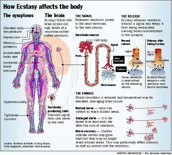 workign around sexual side effectson lexapro