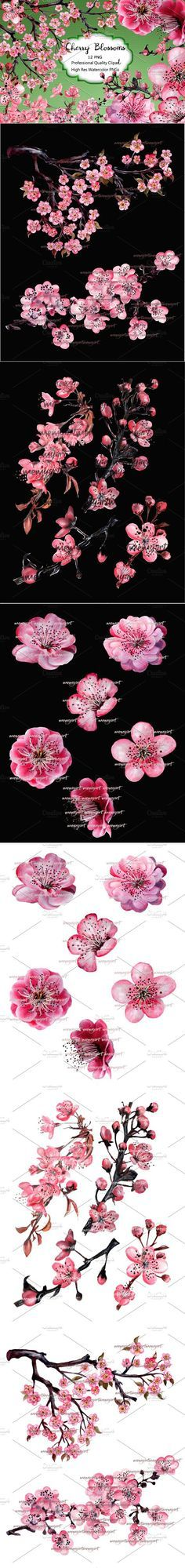 Cherry Blossom Hand Watercolor. Wedding Card Templates