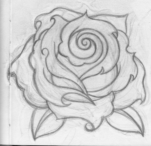 roses drawings | Simple Rose Drawing