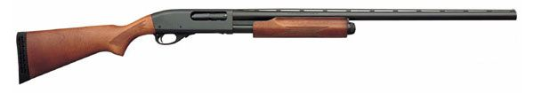 Remington 870 Express. A beautiful, well made gun that I've been dreaming about. I love the kick of a 12 gauge shotgun on a hot summer day....