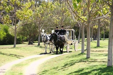 Perth: From $99 for a Deluxe Suite Stay with Breakfast and Late Checkout at Peel Manor House.
