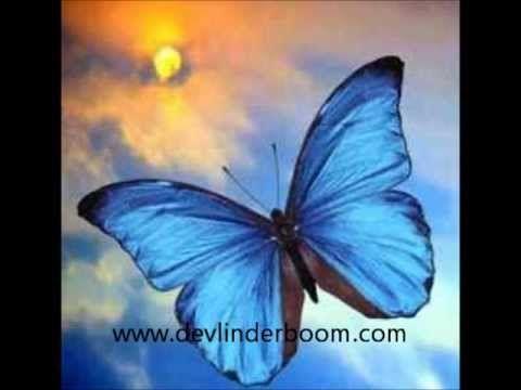 Kindermeditatie De Vlinder