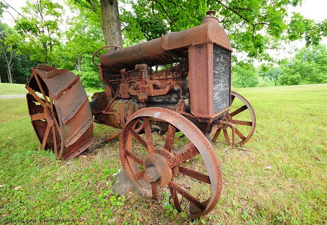 Fordson Tractor - Photo by Chris Leow.