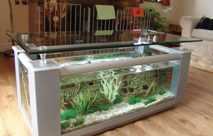 1000 Ideas About Coffee Table Aquarium On Pinterest Fish Tank Coffee Table Fish Tanks And