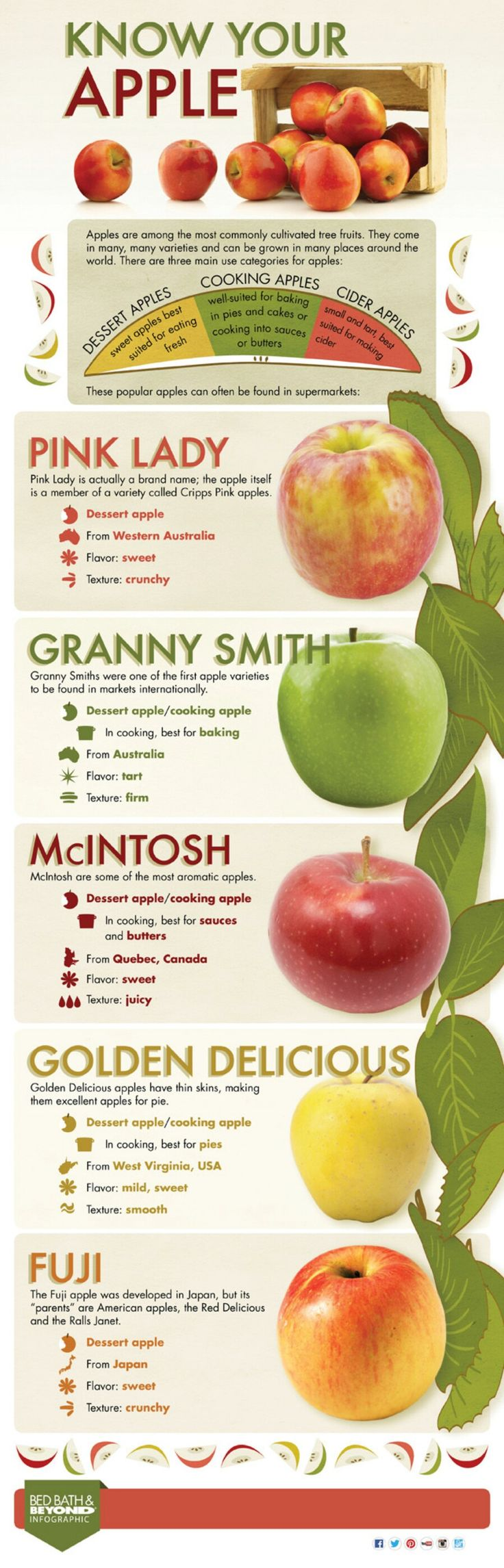 21. Which apples are best for which applications?