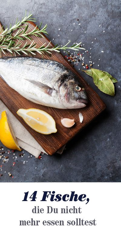 Nachhaltiger Konsum sieht anders aus: Greenpeace verrät, welche Fischarten Sie nicht mehr kaufen sollten