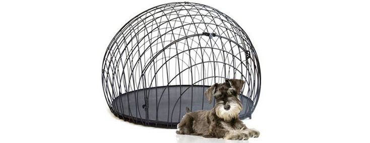 eiCrate - Modern Dog Crate, pretty but not very den like, some dog like the safety thing.: Dogs Crates, Modern Dogs, Dogs Kennels, Dog Crates