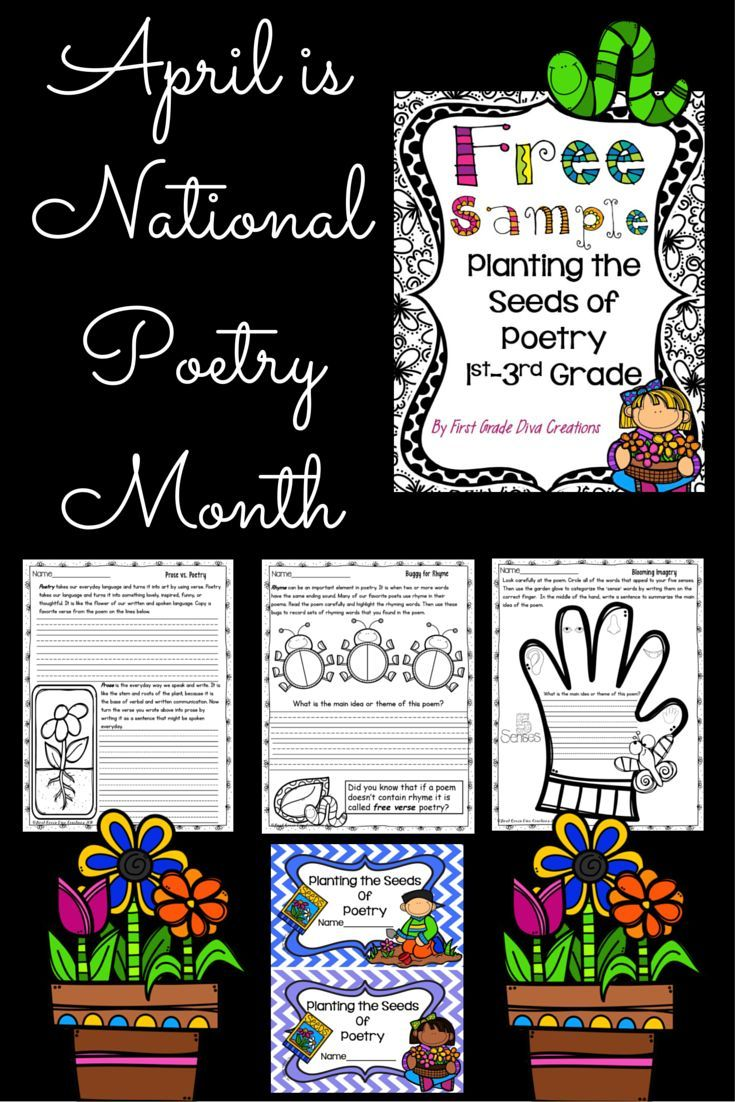 Looking for poetry lessons to use in your elementary classroom? It is never too early to instill a love of poetry. Use these poetry lessons, poetry activities, and graphic organizers to teach figurative language and the elements of poetry. Print, copy, an
