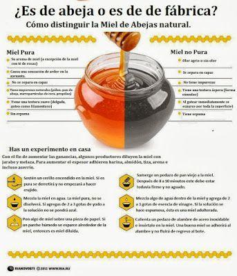 Miel: ¿De abeja o de fábrica? aprende a diferenciarlas. ~ Nueva Mentes