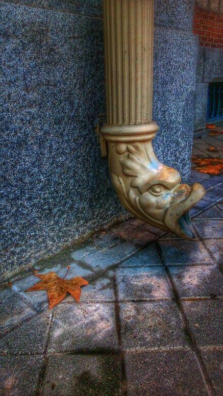 Dragón otoñal en la Casa del Reloj de la Arganzuela