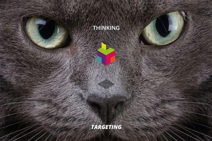 #thinkingtargeting #ttmedialab