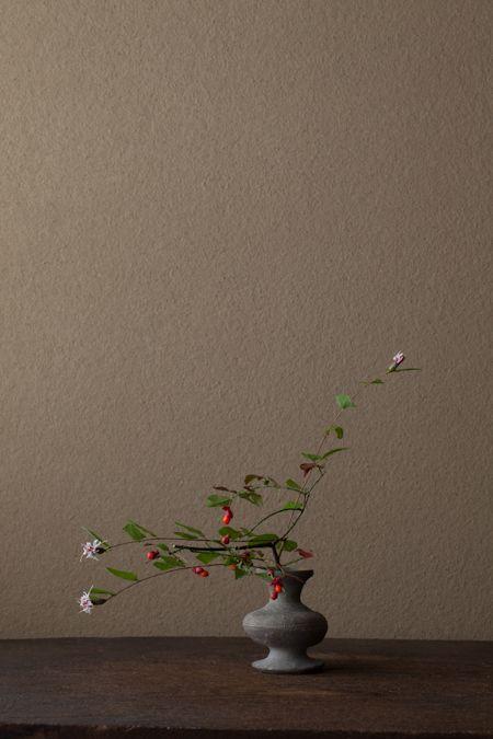 jwstudio: Kawase Toshiro, ikebana.