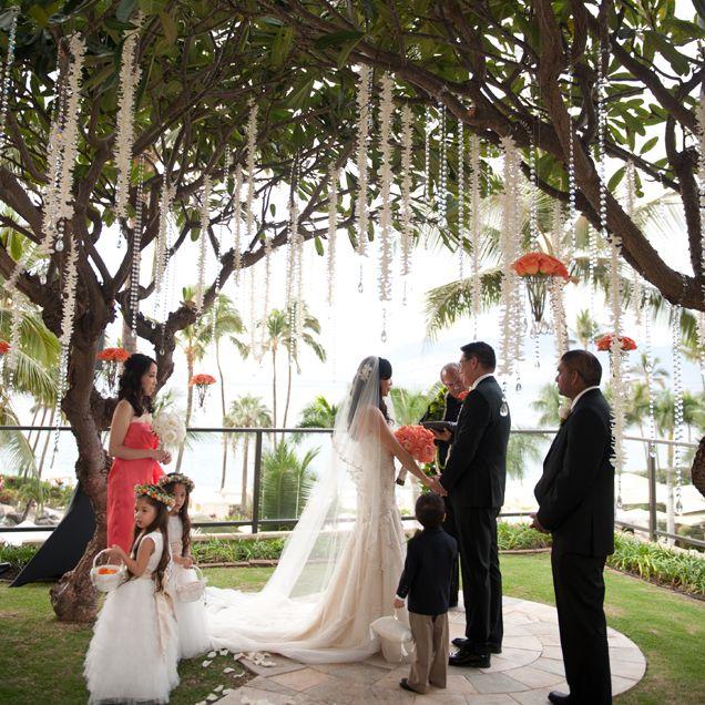 Hanging Plumeria Garlands And Bead Simple Striking For A Hawaiian Wedding