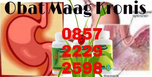 Obat sakit maag, obat sakit maag kronis, jual obat tradisional sakit maag kronis Hp 0857 2229 2598, obat herbal sakit maag kronis, obat sakit maag kronis alami, pengobatan sakit maag kronis, mengobati sakit maag kronis
