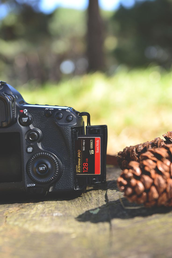 139 best photographers toolkit images on pinterest camera in its natural environment sandisk extreme pro compactflash memory card fandeluxe Images