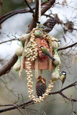 voederklok van terracotta bloempot met o.a pinda's en vetbollen