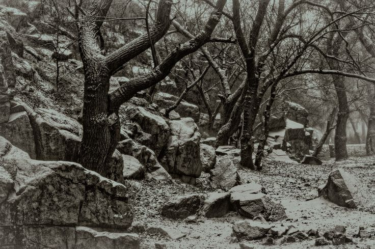 Etude #170106DSC2902. - Khortitskiy rocks in the snowfall.