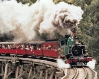 Puffing Billy Steam Train from Melbourne: day trip to Yarra Valley Vineyards & Healesville Wildlife Sanctuary