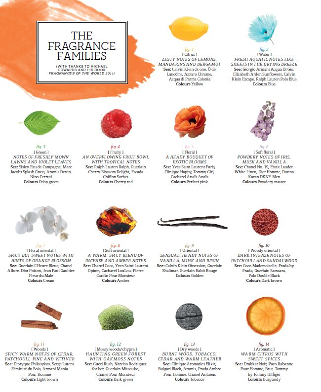 Fragrance Families perfumes w/ a particular scent. www.Scentbird.com