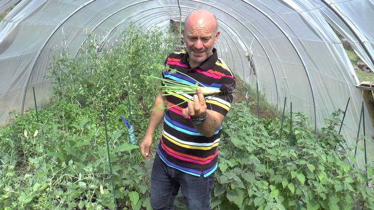Piet Patron - Huysentruyt gives a tour of his green house at Likoké in France