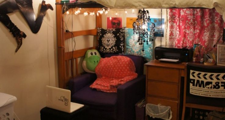Really Useful The Function of Dorm Loft Beds For Small Space