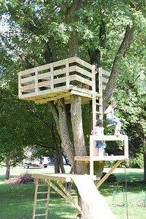 LOTS and lots of tree house ideas …