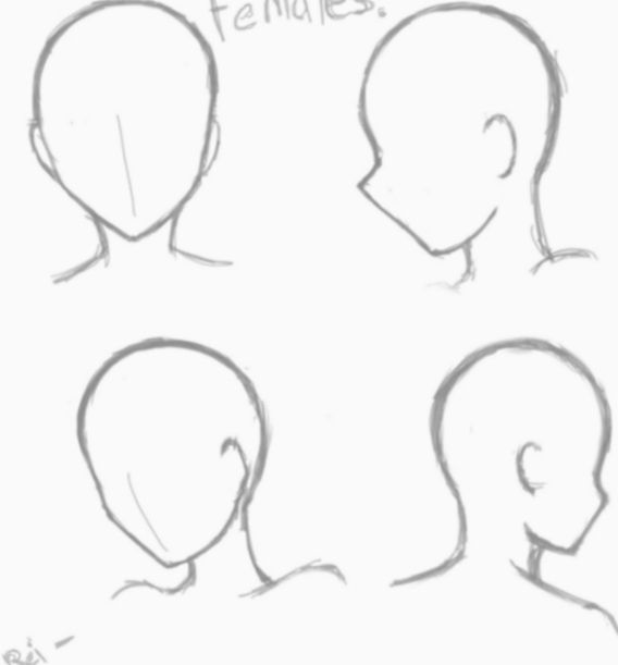 Anime Face Base Female Manga Animecosplay Mangacosplay Anime Poses Reference Anime Poses Anime Base