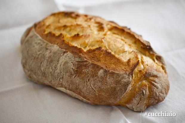 Pane bianco con lievito madre liquido