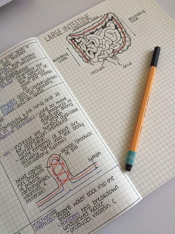 Ms de 25 ideas increbles sobre Dibujos inspiradores en Pinterest
