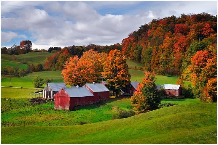 Vermont, I love you. Family land.