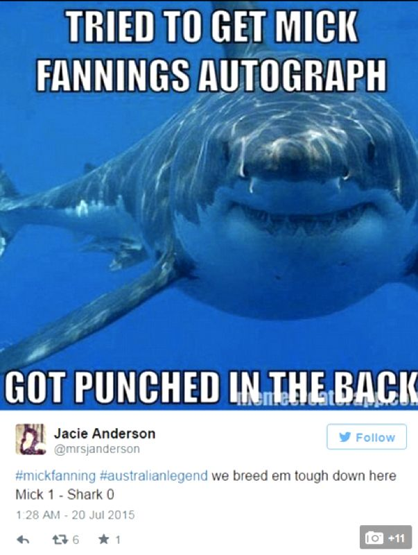 Mick Fanning, Memes, Surfing, JBayOpen, WSL, Shark, Great White,